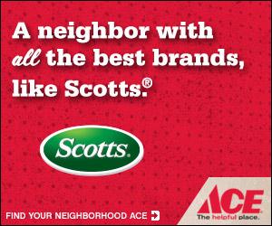 ace_brands_scotts_300x250