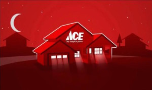 Turner ACE Hardware LED Light Bulbs